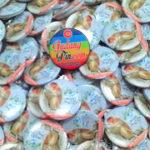 Bikin Pin Murah – Pin Gantungan Kunci Polos 4.4cm 200pcs Wuki di Yogyakarta